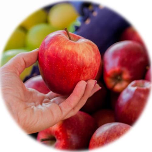 warsztaty zdrowego żywienia dla dzieci